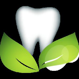 Dental Care Chapala